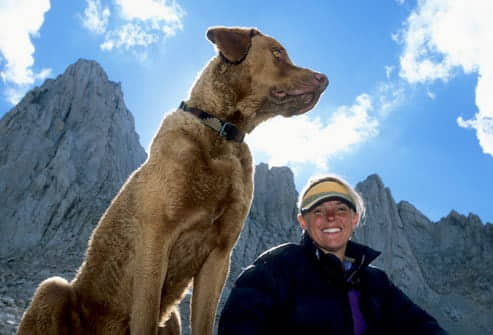 exercising-with-your-dog-hiking